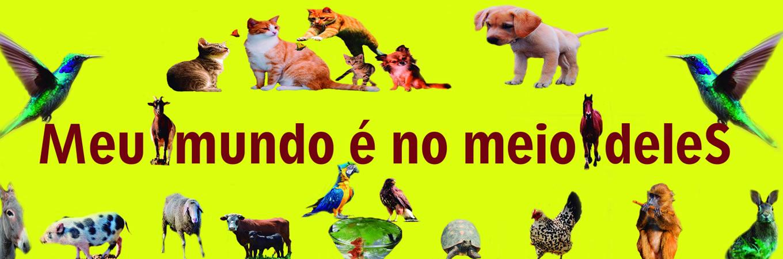 Slide Anima Mais Animais 02